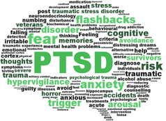 infographic illustrating the PTSD brain